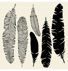 Beautiful Vintage Feathers vector image