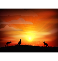 Sunset background with animals kangaroo vector