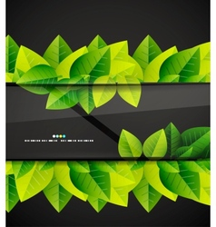 Green leaves and glass background vector image