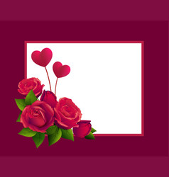 red rose bouquet and two heart shape template vector image