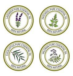Set of essential oil labels vector