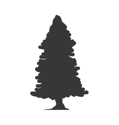 Pine tree icon nature design graphic vector