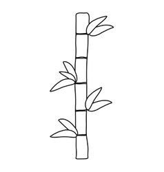 Bamboo design bamboo and leaf icon vector