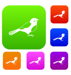 bird set collection vector image