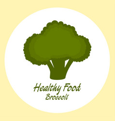 broccoli healthy food concept vector image