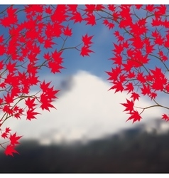 Greeting card with autumn landscape Red maple vector image