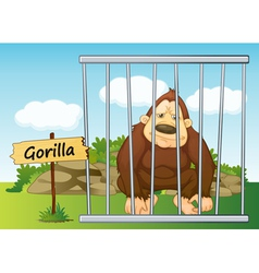 Gorilla in cage vector