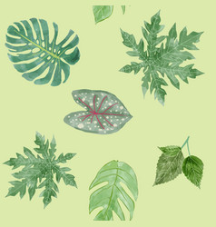 Botanical background of green leaves tropical vector
