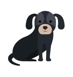 Cute dog pet icon vector