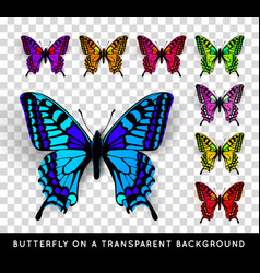 Realistic butterfly on transparent background vector image vector image