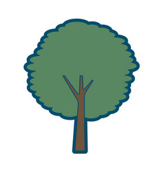 tree trunk bush nature forest ecology vector image