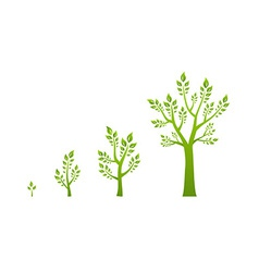 Green tree growth eco concept vector image