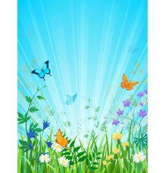 Sunny meadow vertical version vector image