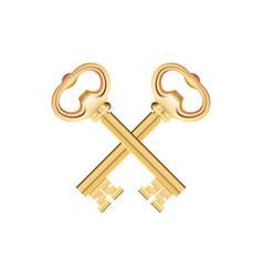 Crossed golden keys isolated on white background vector