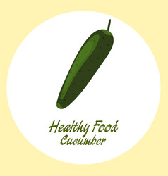 green cucumber healthy food concept vector image vector image