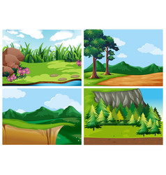 Four forest scenes at daytime vector