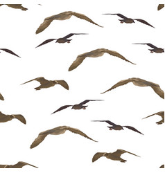 Birds gulls seamless vector
