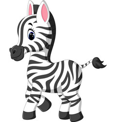 cute zebra cartoon vector image vector image