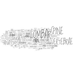 Lumbar word cloud concept vector