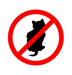 No cats sign do not allowed on white background vector image vector image