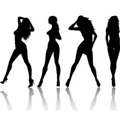 sexy females vector image