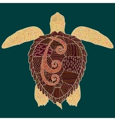 Caretta-caretta turtle with high details vector