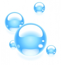 bubbles vector image