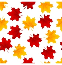 maple seamless vector image vector image