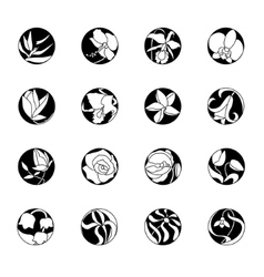 Set with round floral icons Black and white vector image
