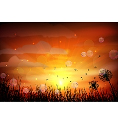 Sunset background with dragonfly vector