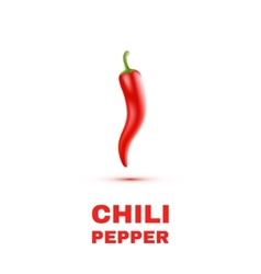 Chili peppers isolated on white background vector