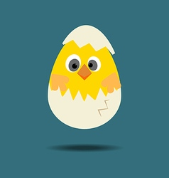 Easter chicken icon vector