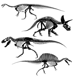 Ancient fossil dinosaur skeletons lizard animals vector