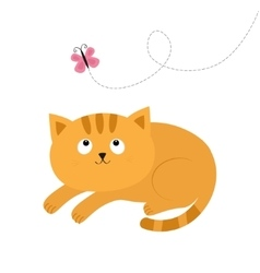 Cute red lying orange cat and looking at flying vector image vector image