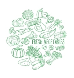 Decorative monochrome vegetables vector image vector image