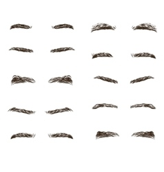 Part of the male person s eyebrows vector