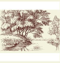 River flow in the woods vector