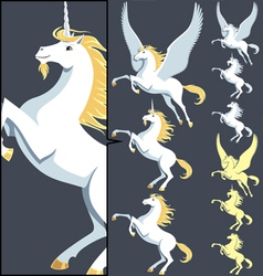 Pegasus unicorn stallion vector