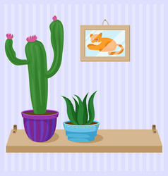 cactus and succulent home plants in pots on wooden vector image