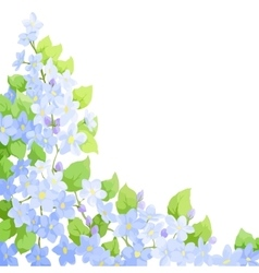 forget me not background vector image