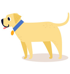 Cute cartoon golden retriever in a blue collar vector