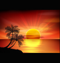 Sunset background palm tree vector