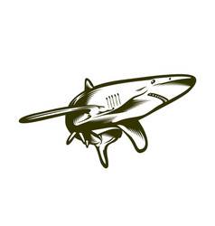 big shark engraving style vector image