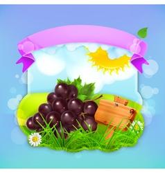 Fresh fruit label grape background for making vector image vector image