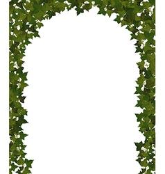 Ivy arch vector