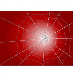 Spider wed vector