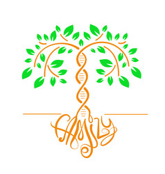 icon of a tree with a dna trunk vector image