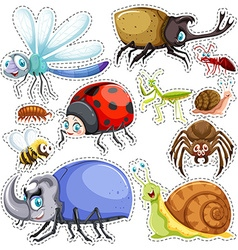 Sticker set of many insects vector image