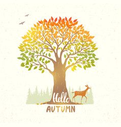 tree autumn vector image vector image