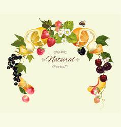 Berry fruit wreath vector image
